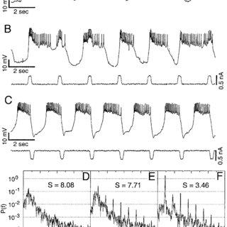 (PDF) Dynamic Control of Irregular Bursting in an