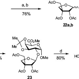 (PDF) Synthesis of apiose-containing oligosaccharide