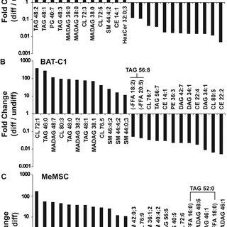 (PDF) Lipid Profiling of In Vitro Cell Models of