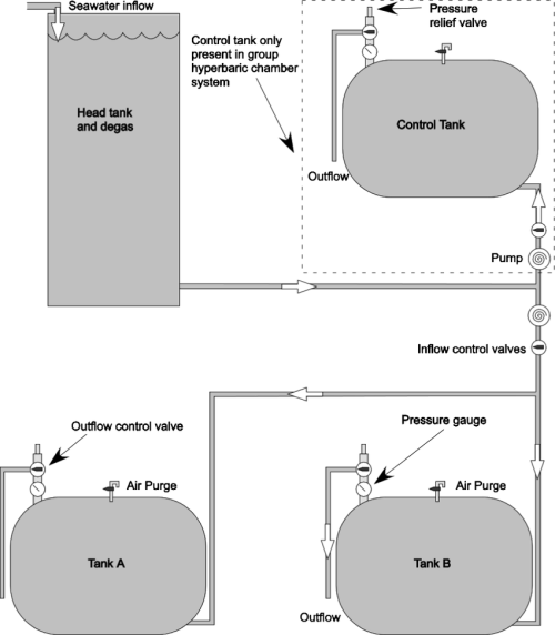 small resolution of  general schematic of hyperbaric chamber design and flow regulation used to examine swim bladder integrity