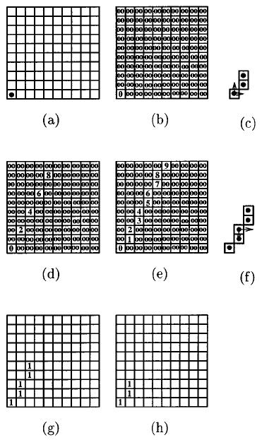 Illustration of recursive dilation algorithm. (a) Input