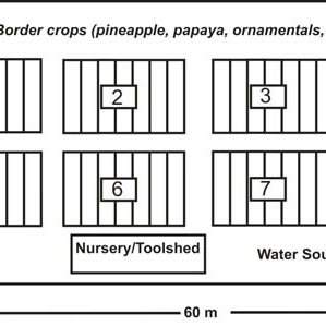 (PDF) Philippine allotment garden manual with an