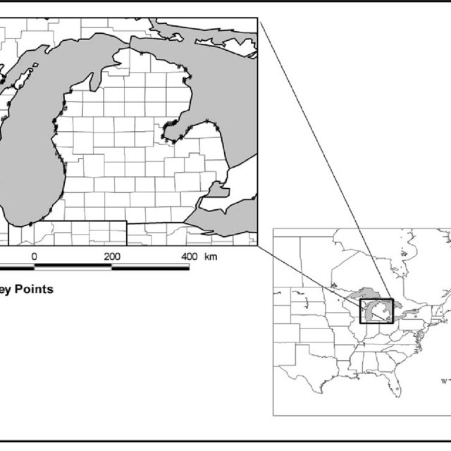 (PDF) The Importance of Spatial Scale for Conservation and