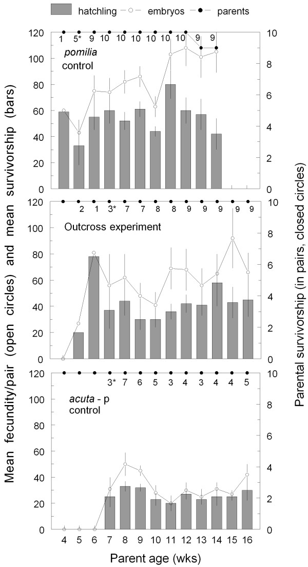 Example results from a no-choice experiment testing for