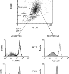flow cytometric dot plot of blister fluid illustrating the gating strategy used to discern extravascular neutrophil [ 830 x 1165 Pixel ]