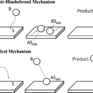 11 Top model: Langmuir-Hinshelwood Mechanism—two molecules