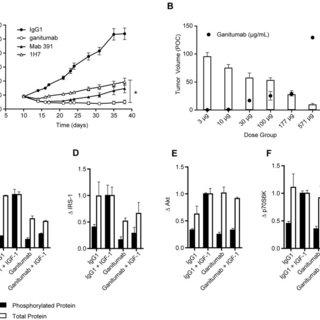 (A–C). Determination of antibody IC50 for IGF1R inhibition