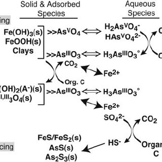 (PDF) The influence of sulfur and iron on dissolved
