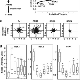 (PDF) An siRNA screen identifies RSK1 as a key modulator