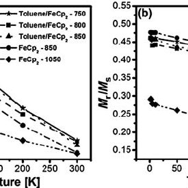 Transmission electron microscopy (TEM) images of Fe