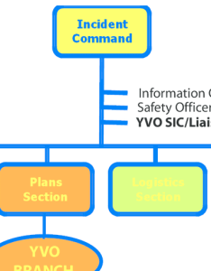 Hypothetical organization chart of an incident command system ics during event response at the yellowstone caldera volcano observatory also rh researchgate