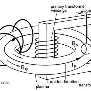 Basic schematic of a tokamak, showing the toroidal field