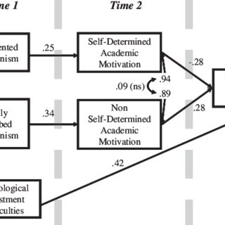(PDF) Perfectionism, Academic Motivation, and