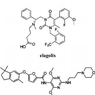 (PDF) GnRH Receptors in Cancer: From Cell Biology to Novel