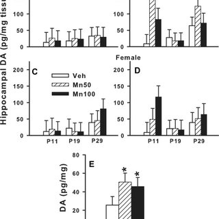 Hippocampal norepinephrine (NE): NE concentrations in