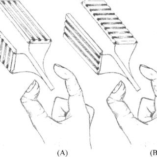 (PDF) Tactile Experience Does Not Ameliorate Age-Related