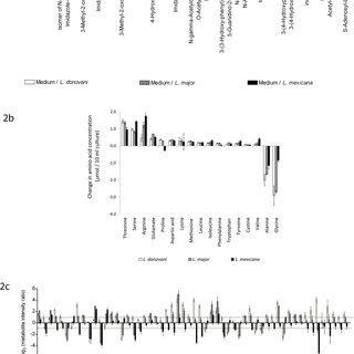 (PDF) Metabolomic Analyses of Leishmania Reveal Multiple
