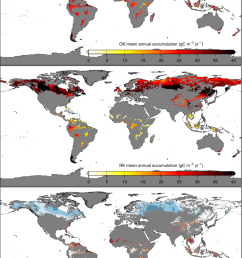 spatial analysis of the overall carbon sink a gridded spatial distribution of the [ 850 x 1301 Pixel ]