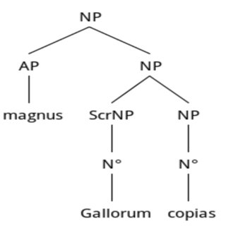 Tree representation of Topic Focus according to X-Bar