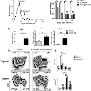 Trpm4 deletion reduces disease severity in EAE mice. (a,b