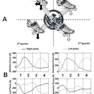(PDF) Pedal force effectiveness in cycling: A review of
