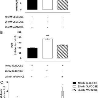 (PDF) Diabetes Mellitus Increases Reactive Oxygen Species