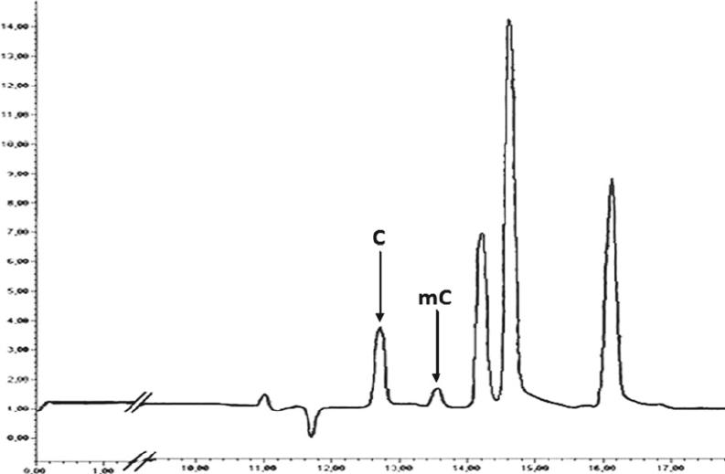 High-performance capillary electrophoresis