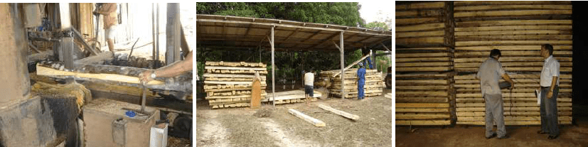 Air Drying Wood