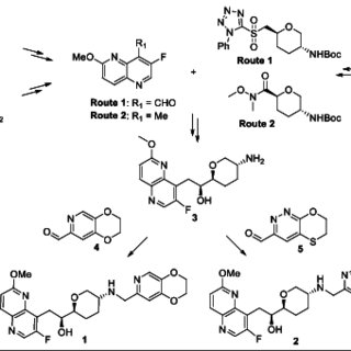 Synopsis of the two routes to homobenzyl alcohol 3, the