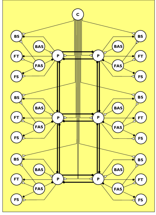 small resolution of schematic diagram of a distributed neural network for the control of locomotion excitatory connections are