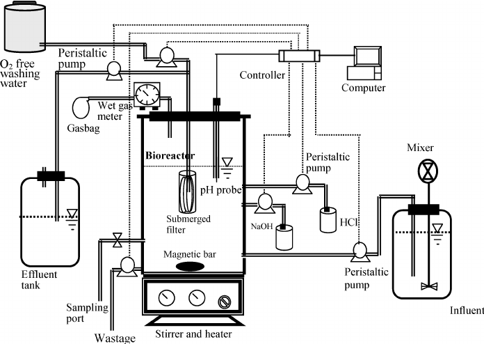 Schematic of the fermenter system used in the experiment