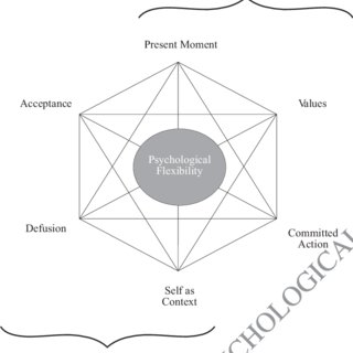 (PDF) Acceptance and Commitment Therapy: Applying An