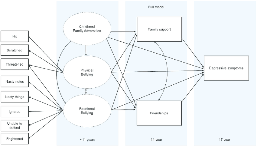 The full model based on the relationships in the