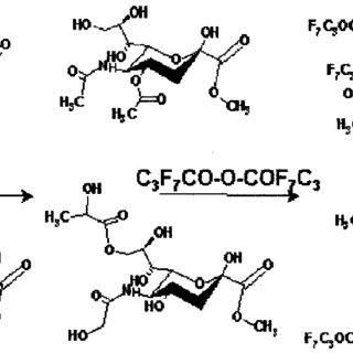 (PDF) Diversity of sialic acids revealed using gas