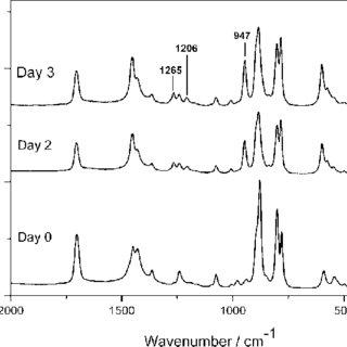 Raman spectra of a liquid mixture of hydrogen peroxide