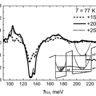 Absorption modulation spectra for ppolarized light at T