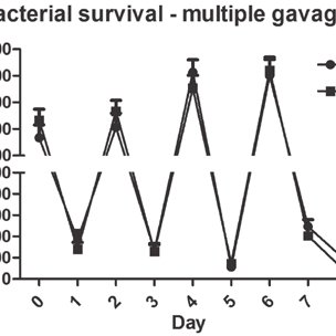 Time course of bacterial recovery from the stool following