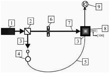 Schematic diagram of the adaptive fi ber-optic