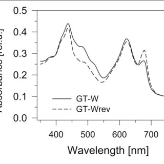 | Whole cell absorption spectra of three Synechocystis