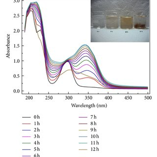 (a) Growth kinetics regime of photoproducts formation for