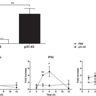 (PDF) Mechanisms of innate immune activation by gluten