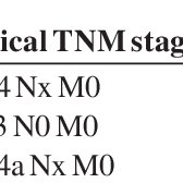 American Joint Committee on Cancer TNM staging system for