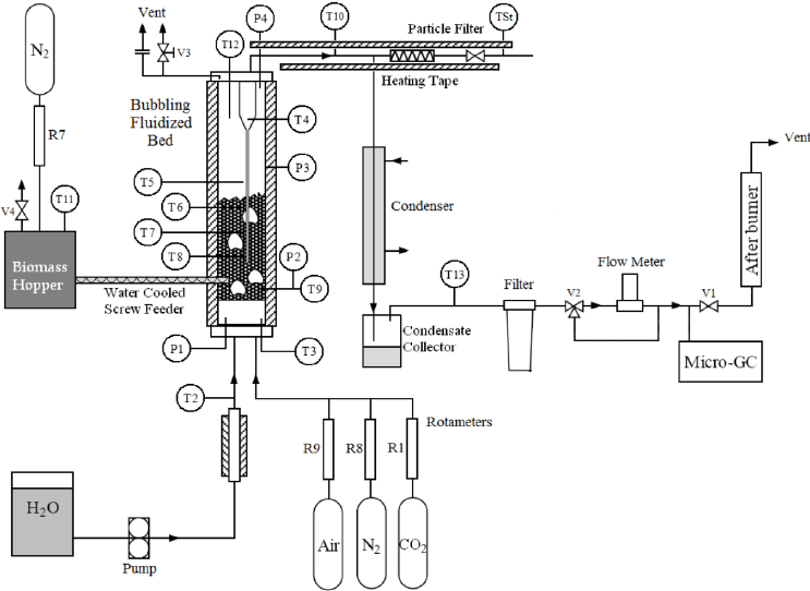 Schematic diagram of experimental unit for biomass air and