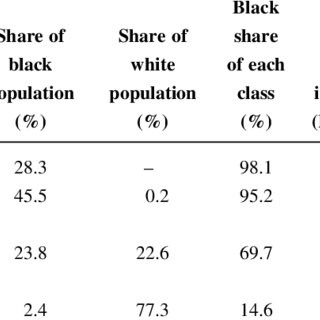 (PDF) The emergent middle class in contemporary South