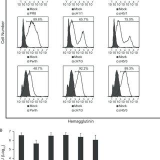 (PDF) Influenza Viruses Expressing Chimeric Hemagglutinins