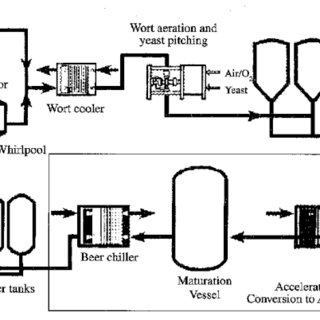 Process flowsheet for secondary fermentation of beer using