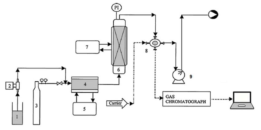 Experimental setup: (1) solute tank; (2) dosing pump; (3