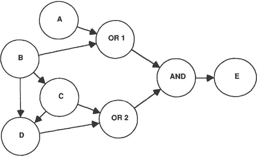Multiply Connected Network with Some Logical Determinacy