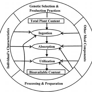(PDF) Breeding for micronutrients in staple food crops