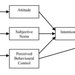 (PDF) A randomised controlled trial of a theory-based